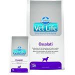 25388 FARMINA Vet Life OSSALATI диета для собак при МКБ оксалаты, ураты и цистины 12кг