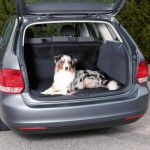 TRIXIE Автомобильная подстилка для багажника 1,50 х 1,20 м